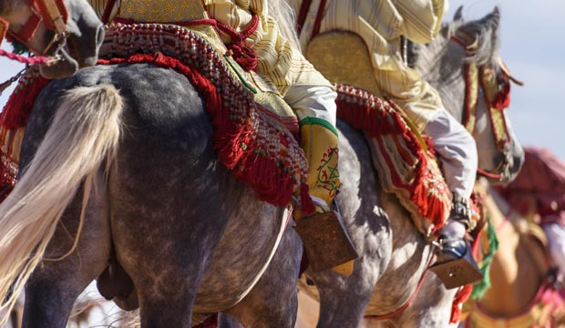 All the Festivals and Events in Morocco. Morocco Festivals Calendar at one click