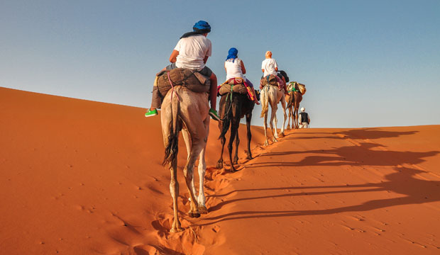 Before sleeping in a tent in Marrakech you have to go up in a dromedary