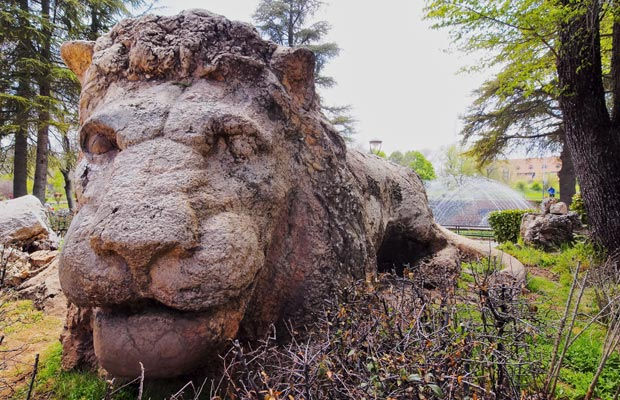 What to do in Ifrane. The stone lion is a very visited monument