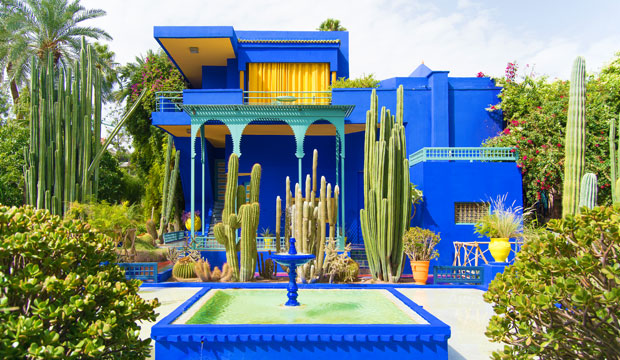 What is there to see in Marrakech? The Majorelle Gardens is one of the most recommended green spaces