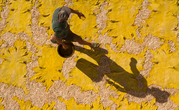 At the Chouara Tannery in Fes (Morocco), a panoramic view will be offered that will remain marked for life