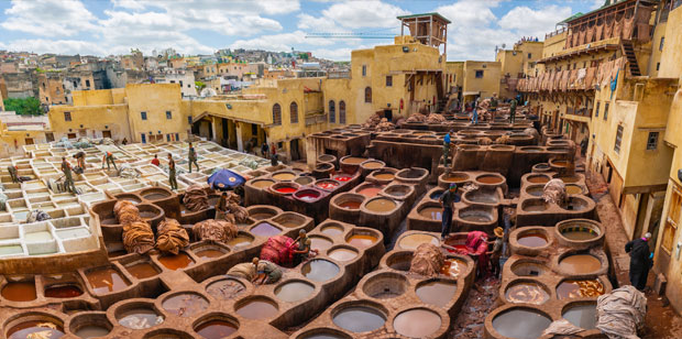The leather tannery Fez (Morocco), like the Chowara one, currently function as large cooperatives with their own administration