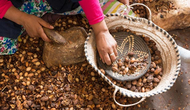 What is argan oil good for? Argan oil is good for hair and also for cooking